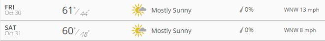 weather 1031