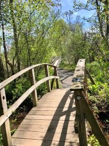 Saugerties Lighthouse Trail